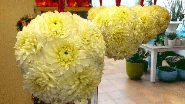Blumenkugeln von Blumenhaus Ehling